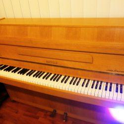 Hpfeld Piano (110cm)